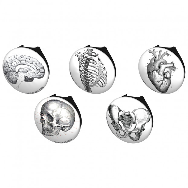 Vintage Anatomy Stethoscope Button Pack